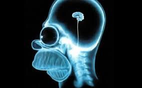 Resultado de imagen de cabeza simpson