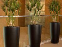 10+ <b>Artificial plants</b> and <b>trees</b> ideas | <b>artificial plants</b> and <b>trees</b> ...