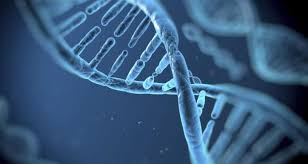 Image result for DNA on the cloud