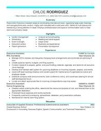 Curricula Vitae  CV  Template Sample