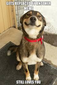 Good Guy Dog memes | quickmeme via Relatably.com