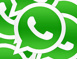 Image result for whatsapp safety