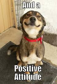 Positive Attitude - quickmeme via Relatably.com