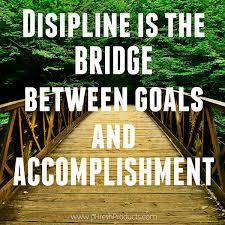 discipline is the bridge between goals and accomplishment stay discipline is the bridge between goals and accomplishment stay phresh phresh products