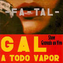 Gal a Todo O Vapor album by Gal Costa
