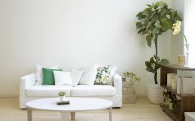 Living Room Borders Wallpaper Border Ideas For Living Room House Decor