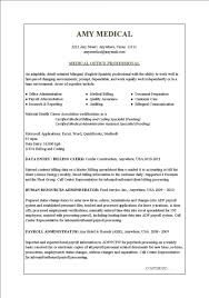 sample resume for office job sample resume for office job karina m tk