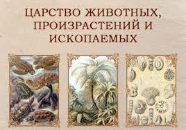 «<b>Царство</b> животных, произрастений и ископаемых ...