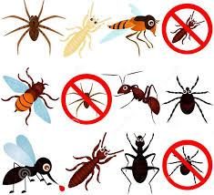 نتيجة بحث الصور عن مكافحة حشرات