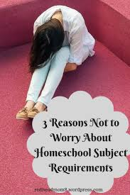 best ideas about homeschooling pros and cons 3 reasons not to worry about homeschool subject requirements