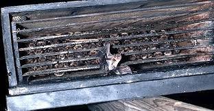 Bat Conservation and Manangement Bat House Informationbatsinbox