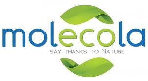 Купить <b>Molecola</b> в интернет-магазине Ecotide