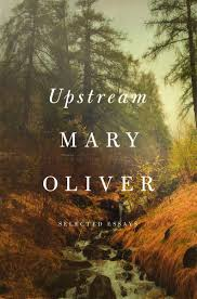 flood i built it to build it mary oliver s habit of being mary oliver 2016 upstream