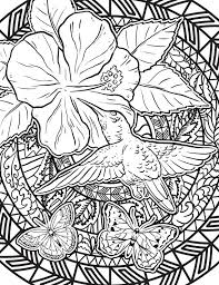 Small Picture Items similar to Hummingbird Coloring Page Adult Coloring Page