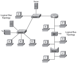 network topologies   expert networking  good example of physical topology   combination of bus and star topology