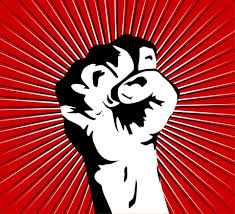 """Résultat de recherche d'images pour """"faministe fight"""""""