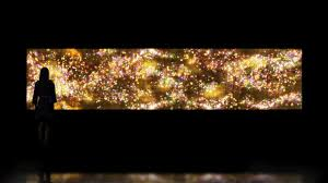 <b>Flowers</b> and People - <b>Gold</b>, 2015 by teamLab :: | Art Gallery of NSW