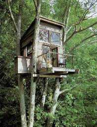 Tree house plans for adults   Design of your house   its good idea    tree house plans for adults photo