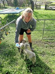 local farmer and freelancer publishes essay on how     eat pray love    lettie stratton  who was born and raised in vermont  explored new zealand for