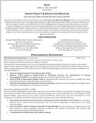 resume template server skills examples sample inside build your 87 wonderful build your resume template