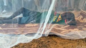 Image result for REDES MOSQUITEIRAS NA GUINE BISSAU