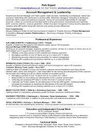 sample resume technical team leader cipanewsletter guest service team leader resume