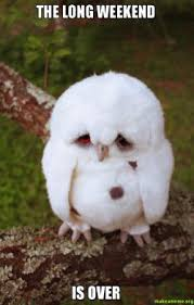 The long weekend is over - Sad Owl | Make a Meme via Relatably.com