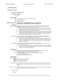 cv pasquale carlucci digital marketing web agency communication