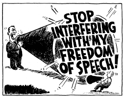Image result for Images of Free speech