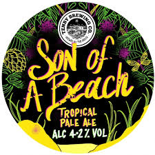 <b>Son of A Beach</b> - Tenby Brewing Co - Untappd