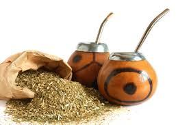 Resultado de imagem para Quais os benefícios do Chá Mate