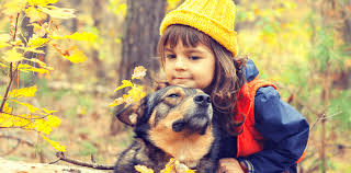 13 Best <b>Dog</b> Breeds for Autism Children & Families | AngelSense