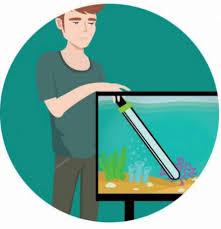 Обслуживание любых аквариумов - Услуги для животных ...