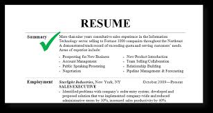 resume summary skills examples resume examples job skills resume resume summary skills examples resume examples summary examples resume summary