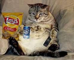 「Sedentary lifestyle」的圖片搜尋結果