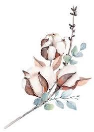 картинки с цветами: лучшие изображения (860) | Цветы ...