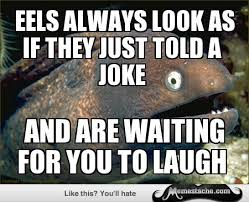 EELS ALWAYS LOOK AS IF THEY JUST TOLD A joke - Memestache via Relatably.com