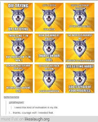 Courage wolf on Pinterest | Wolves, Meme and Insanity Wolf via Relatably.com