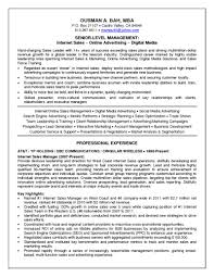 resume templates google latest cv format docs inside  85 terrific resume templates google