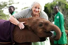 Image result for Daphne Sheldrick Elephant
