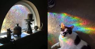 This Peel-And-Stick <b>Window</b> Film Will Fill Your Home With RAINBOWS