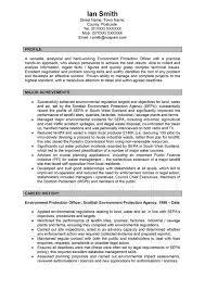 Executive CV Example  Sales Director