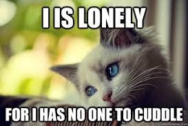 I is lonely for i has no one to cuddle - First World Problems Cat ... via Relatably.com