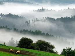 <b>Bohemian</b> Switzerland National Park, Czech Republic -- National ...
