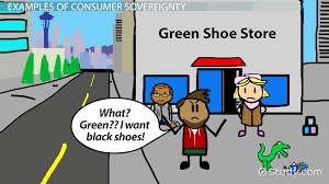 what is a mixed economy definition characteristics examples consumer sovereignty definition limitations