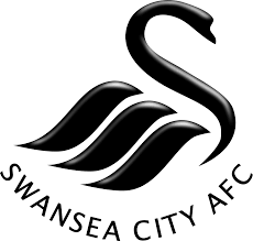 Image result for swansea city 2015