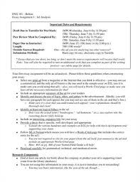 commercial analysis essay  www gxart org  commercial analysis essay example essayscommercial analysis essay on line writing service