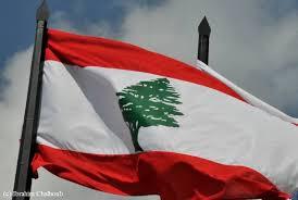 """Résultat de recherche d'images pour """"drapeau Liban monde arabe"""""""