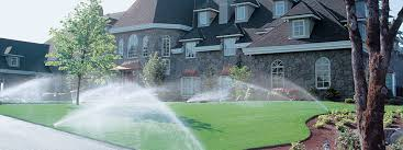 Image result for How Do You Know You Are Hiring The Right Sprinkler Installers?