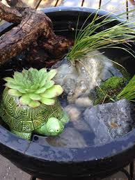 diy patio pond: diy make your own pond in a pot